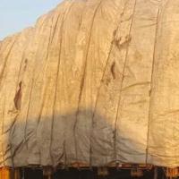DDTH hay trucks